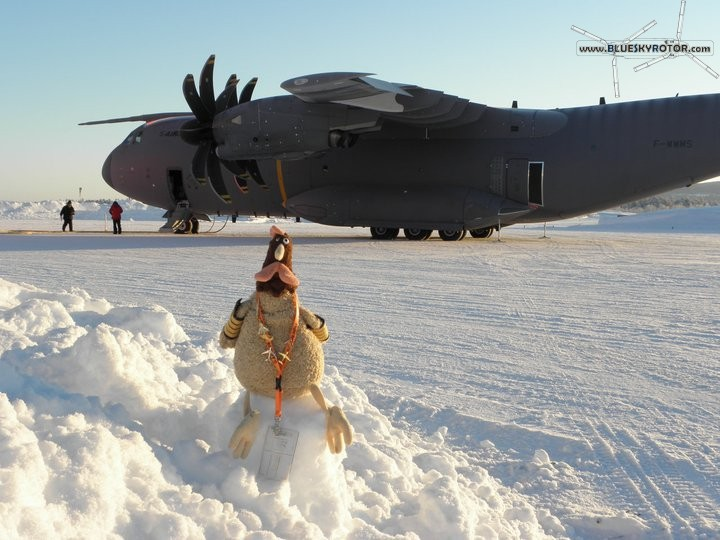 Rocky in Lapland, Sweden
