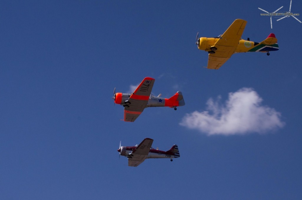3 Harvard in formation