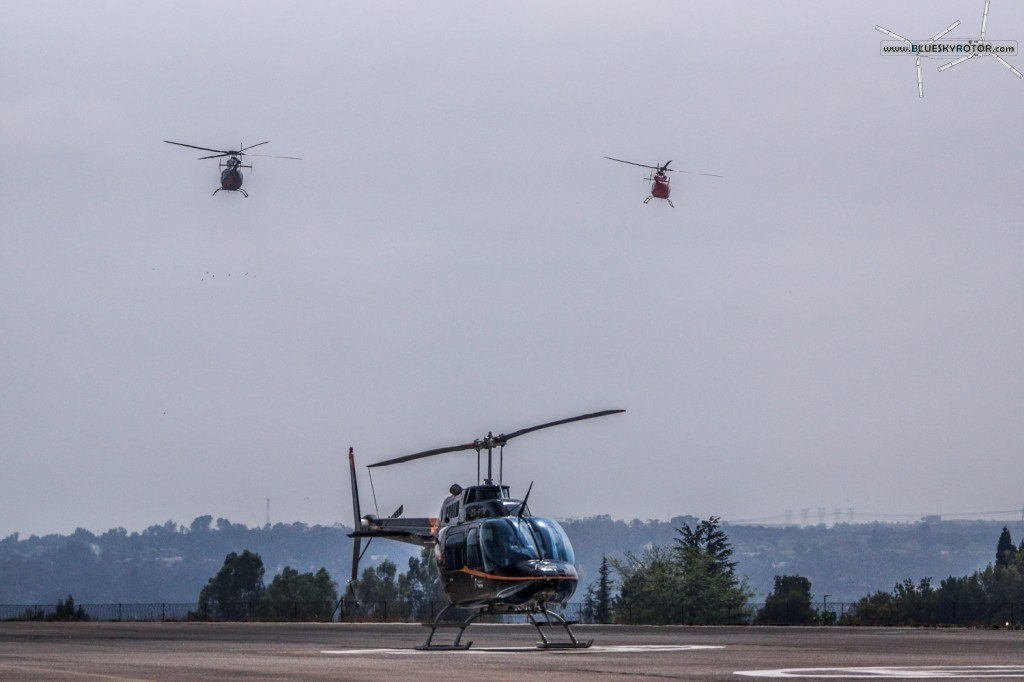 ZS-PTN, Bell 206 B3, and 2 Bell 407